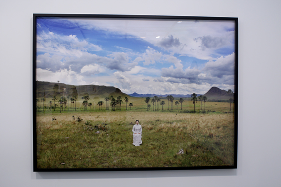 FL14_M_Marina-Abramovic-(places-of-power,-the-garden-of-maitreya)-Galerie-Krinzinger-Vienna-(1-of-2)